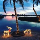 佛罗里达为假日 免版税库存照片