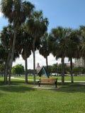 佛罗里达公园江边 免版税库存图片