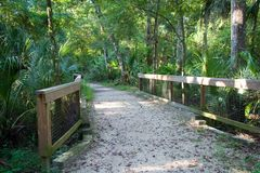 佛罗里达公园 免版税库存图片