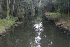佛罗里达在小雨期间的沼泽地小河 图库摄影