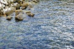 佛罗里达坦帕湾海滩 免版税图库摄影