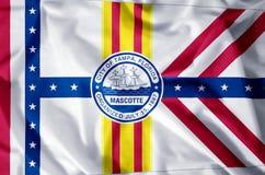 佛罗里达坦帕 皇族释放例证