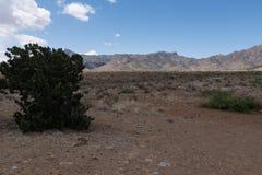 佛罗里达山农村风景,新墨西哥西南部 免版税库存照片