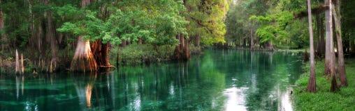 佛罗里达春天哺养了河全景 库存图片