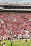 佛罗里达橄榄球州立大学 库存图片