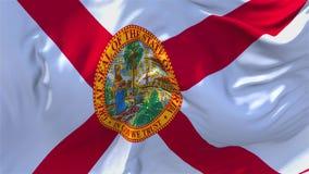 270 佛罗里达沙文主义情绪在风连续的无缝的圈背景中 库存例证