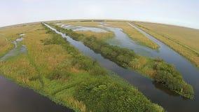 佛罗里达沼泽地的鸟瞰图 图库摄影