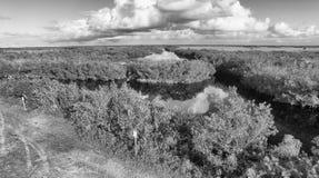 佛罗里达沼泽地鸟瞰图黄昏的 库存图片