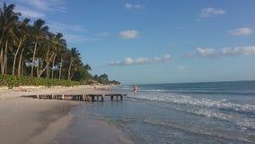 佛罗里达海滩场面 免版税库存图片
