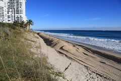 佛罗里达海滩恢复项目 库存图片
