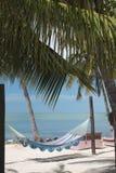 佛罗里达群岛棕榈和吊床3 免版税库存图片