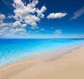 佛罗里达bonita海湾赤足海滩美国 免版税库存图片