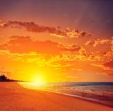 佛罗里达bonita海湾赤足海滩美国 免版税图库摄影