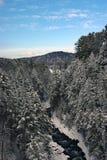佛蒙特雪河冬天 库存图片