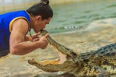 佛统,泰国- 2017年5月18日:危险的鳄鱼展示在 库存照片