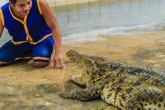 佛统,泰国- 2017年5月18日:危险的鳄鱼展示在 库存图片