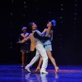 作为享受的职业减速火箭的舞蹈这奥地利的世界舞蹈 免版税库存照片
