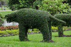 作为动物的树饰物在公园 免版税库存图片