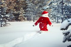 作为圣诞老人打扮的男孩在森林里走 免版税库存照片