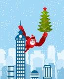 作为圣诞老人穿戴的大红色大猩猩攀登大厦与 免版税库存图片
