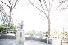 作为地标的Hachiko著名日本狗雕象在涩谷东京|游人在2017年3月30日的日本亚洲 库存照片