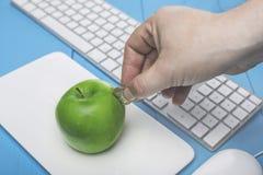 作为存钱罐和手的新鲜的苹果有硬币的 在样式的概念:投资在计算机科技方面 免版税库存照片