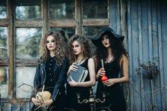 作为巫婆的三名葡萄酒妇女 免版税库存照片