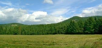作为您的手棕榈和云彩被观看的山  库存图片