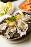 作为新鲜的牡蛎的开胃菜 库存图片