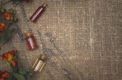 作为消沉有效草本金丝桃属植物医学perforatum对待 替代竹浴biloba银杏树项目医学温泉盘 精油酊瓶 图库摄影