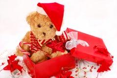 作为熊圣诞节礼品女用连杉衬裤 图库摄影