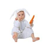 作为红萝卜子项加工好的兔子 库存图片