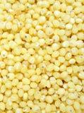 作为纹理的小米种子背景的 库存照片