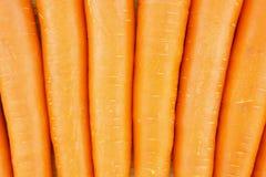 作为纹理的红萝卜 图库摄影