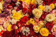 作为背景的混杂的玫瑰色花束 免版税图库摄影