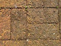 红土带纹理作为背景的 库存图片