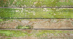 作为背景的绿色老被绘的木门纹理 库存照片