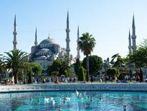 作为蓝色camii著名伊斯坦布尔清真寺多数sultanahmet火鸡 库存照片