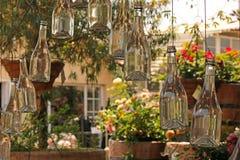 作为装饰暂停的充满水的清楚的玻璃瓶有花卉庭院背景 库存图片