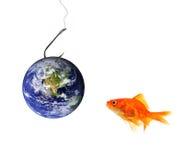 作为诱饵地球捕鱼 库存照片