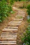 作为道路使用的木板的安排在庭院 免版税图库摄影