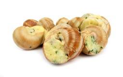 作为食物准备的蜗牛escargot 免版税库存图片