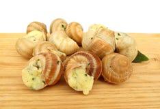 作为食物准备的蜗牛escargot 库存照片