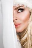作为r的圣诞老人穿戴的美好的性感的白肤金发的女性模型 图库摄影