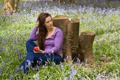 作梦在会开蓝色钟形花的草森林里 免版税图库摄影