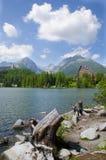 作梦在湖前面 库存图片