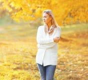 作梦在晴朗的秋天的画象美丽的女孩 库存图片