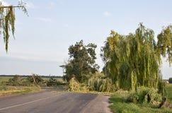 作用飓风乌克兰 免版税库存照片