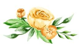 作者开花i绘画照片水彩 手画五颜六色的构成 在空白background.close的花束 库存照片