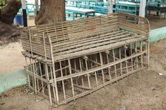 佝偻病老长凳由木头制成在村庄在非洲 库存图片